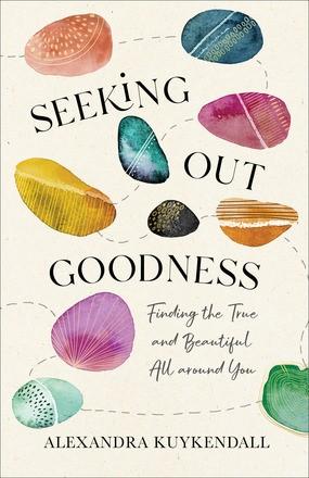 Seeking Out Goodness (Paperback)