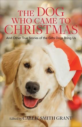 The Dog Who Came to Christmas (Paperback)