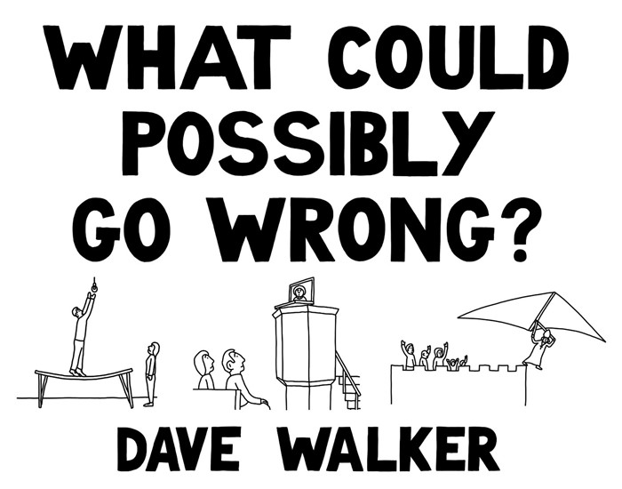 What Could Possibly Go Wrong? (Paperback)