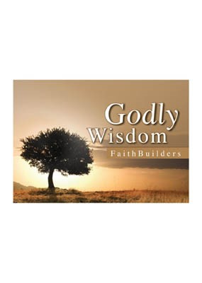 Faithbuilders: Godly Wisdom (Cards)