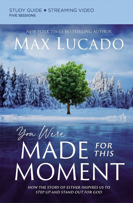 You Were Made for This Moment Study Guide (Paperback)