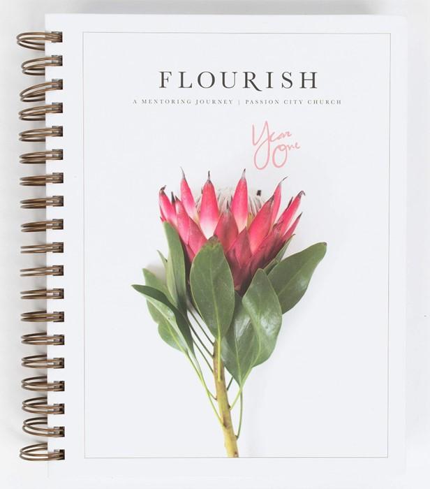 Flourish: A Mentoring Journey, Year One (Spiral Bound)