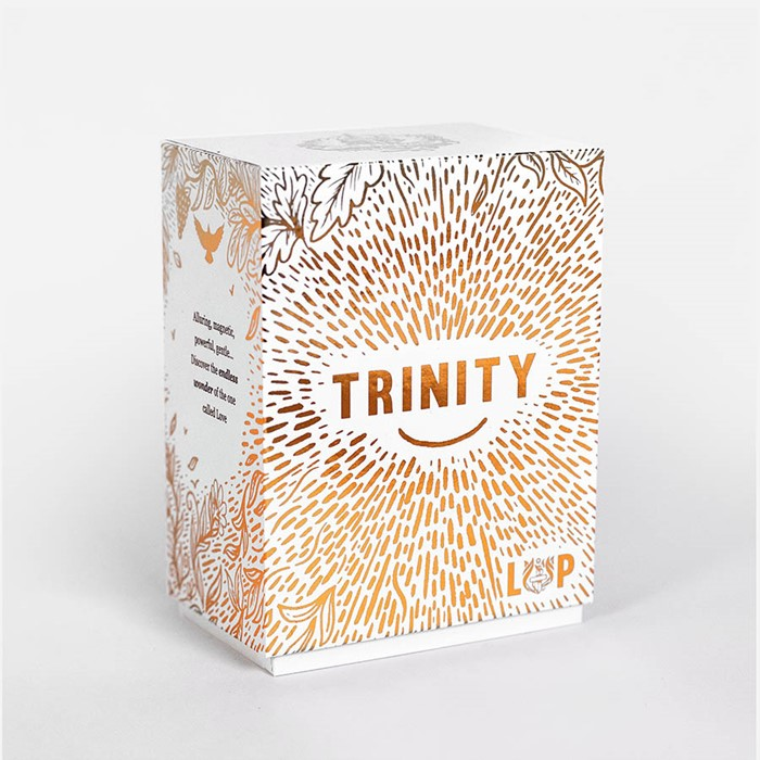 Trinity Illustrated Bible Cards (General Merchandise)
