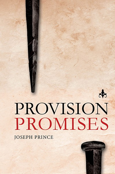 Provision Promises (Hard Cover)