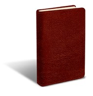 Message Large Print, The, Burgundy (Leather Binding)