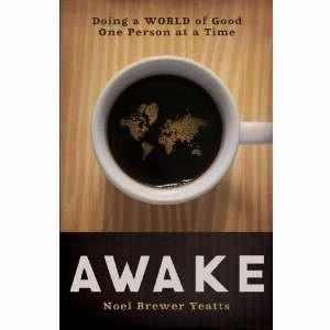 Awake (Paperback)