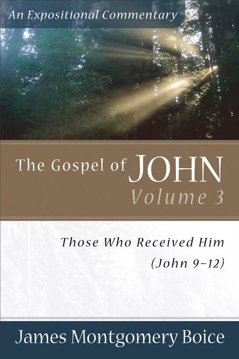 Gospel Of John, The, Volume 3 (Paperback)