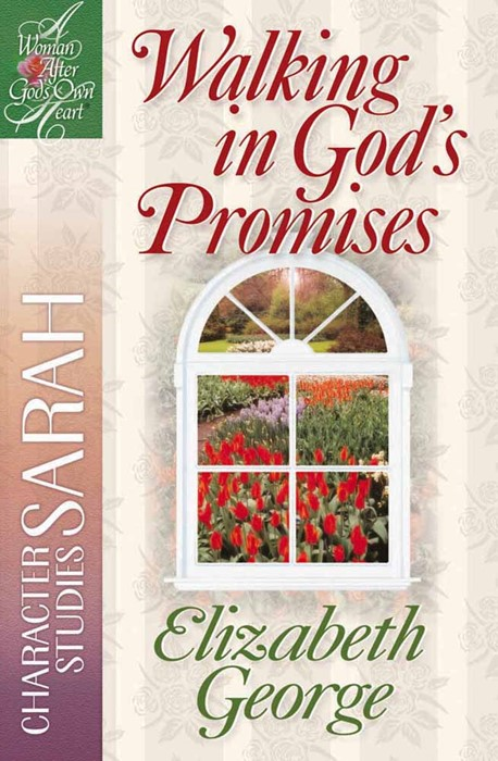 Walking In God's Promises (Paperback)
