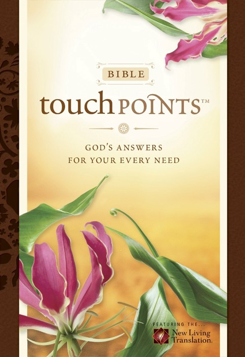 NLT Bible Touchpoints (Imitation Leather)