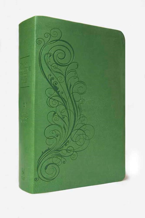 The ESV New Inductive Study Bible (Leather Binding)
