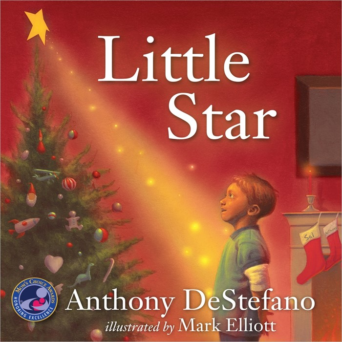 Little Star (Hard Cover)