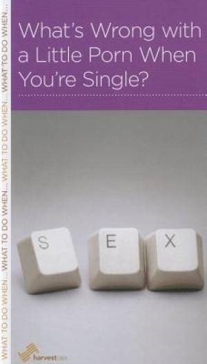 What's Wrong With A Little Porn When You're Single? (Paperback)