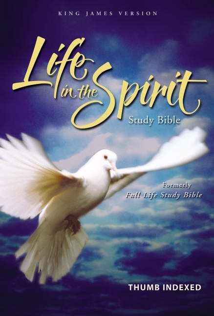 KJV Life In The Spirit Study Bible Indexed, Black (Leather Binding)