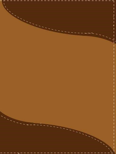 Rvr 1960/Niv Biblia Bilingue, Tamano Personal (Leather Binding)