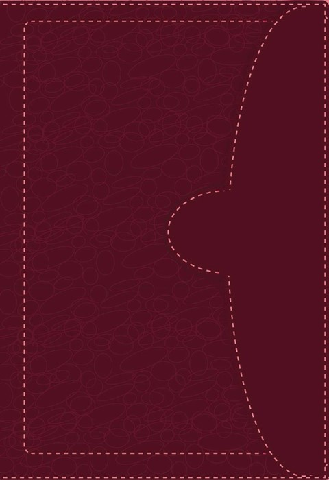 NVI/NIV Biblia Bilingue (Leather Binding)