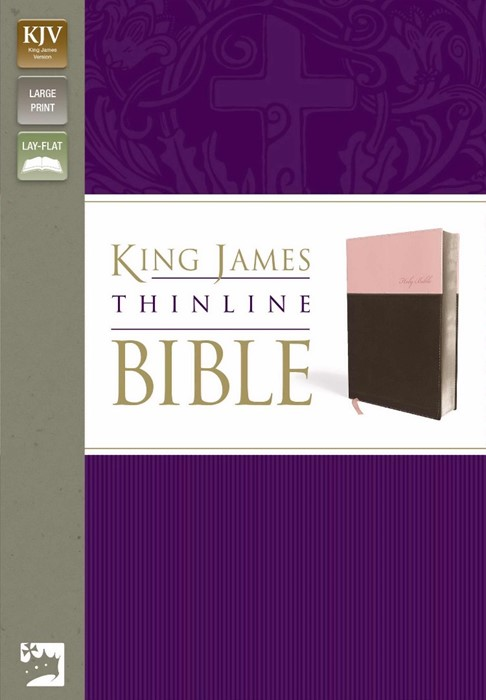 KJV Thinline Bible, Large Print (Imitation Leather)