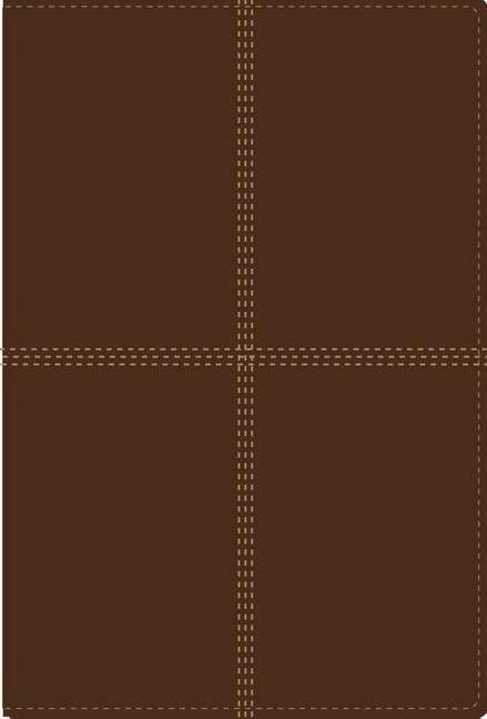RVR 1960 Niv Bilingual Bible - Biblia Bilingue (Leather Binding)