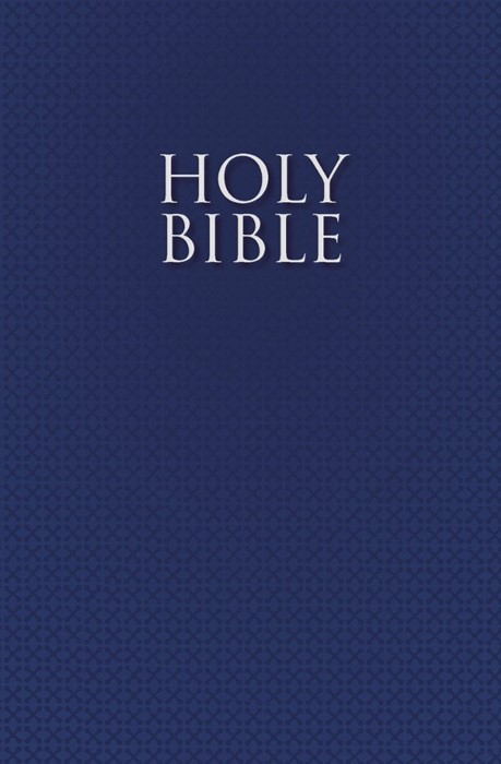 The Holy Bible For Esl Readers (Nirv) (Paperback)