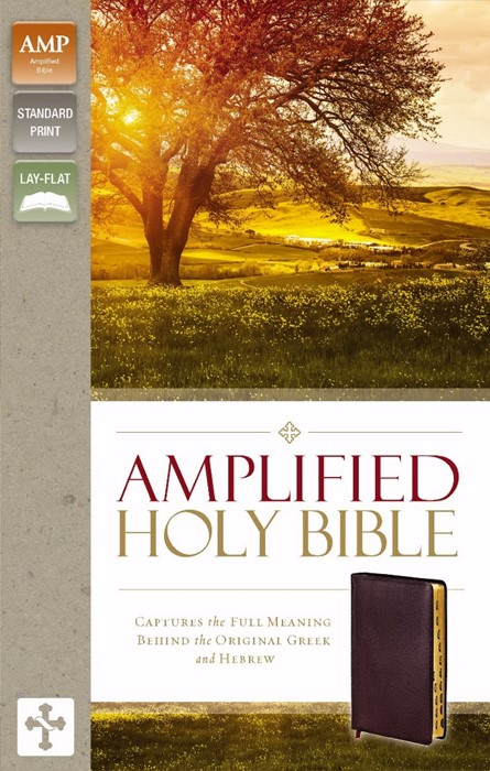 Amplified Holy Bible, Indexed (Bonded Leather)