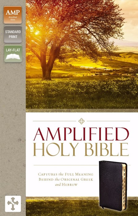 Amplified Holy Bible, Black, Indexed (Bonded Leather)