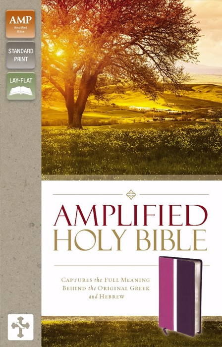Amplified Holy Bible, Dark Orchid/Deep Plum (Leather-Look)