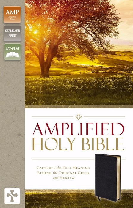 Amplified Holy Bible (Bonded Leather)