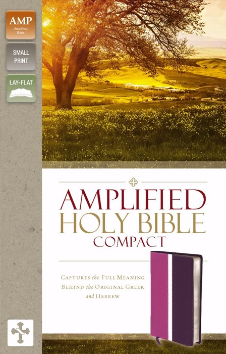 Amplified Holy Bible, Compact, Orchid/Plum (Leather-Look)