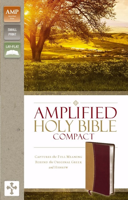 Amplified Holy Bible, Compact, Camel-Burgundy (Leather-Look)