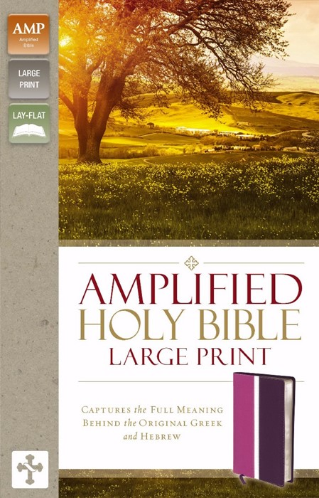 Amplified Holy Bible, Large Print, Orchid/Plum (Leather Binding)