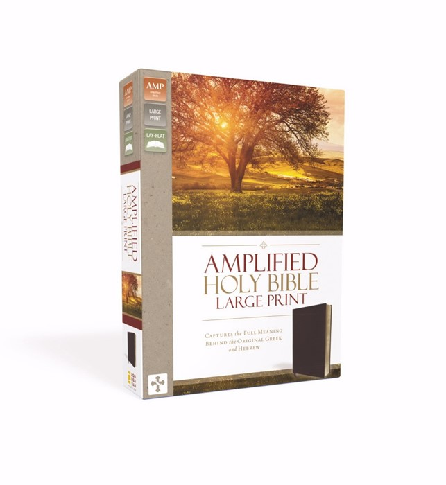 Amplified Holy Bible, Large Print burgundy (Leather Binding)
