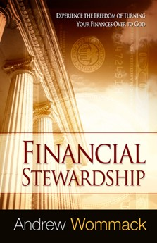 Financial Stewardship (Paperback)