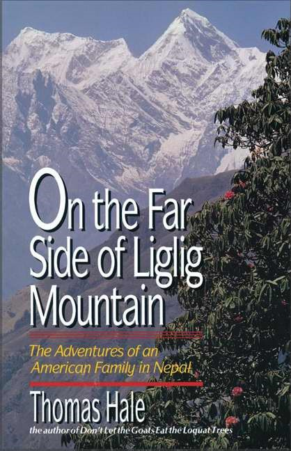 On the Far Side of Liglig Mountain (Paperback)