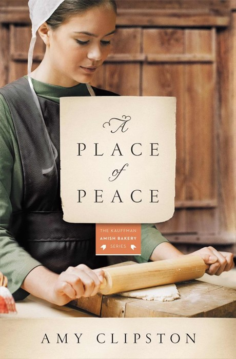 A Place Of Peace (Paperback)