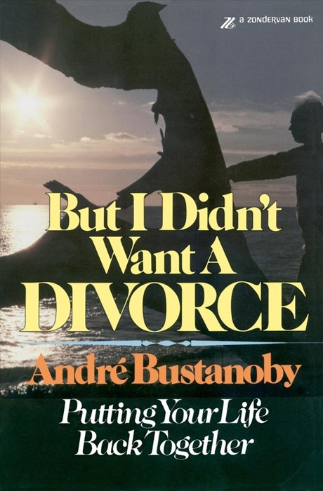 But I Didn't Want A Divorce (Paperback)