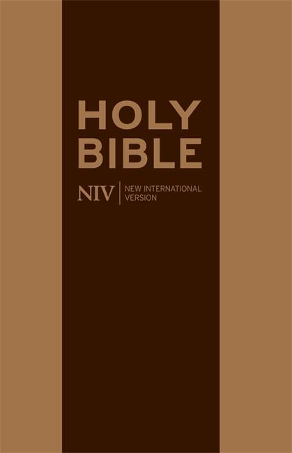 NIV Traveller's Soft-Tone Bible (Flexiback)