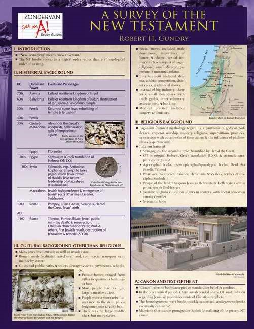 Survey Of The New Testament Laminated Sheet, A (Other Book Format)