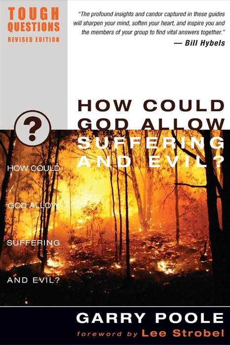 How Could God Allow Suffering And Evil? (Paperback)