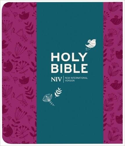 NIV Journalling Soft-Tone Bible With Clasp (Flexiback)