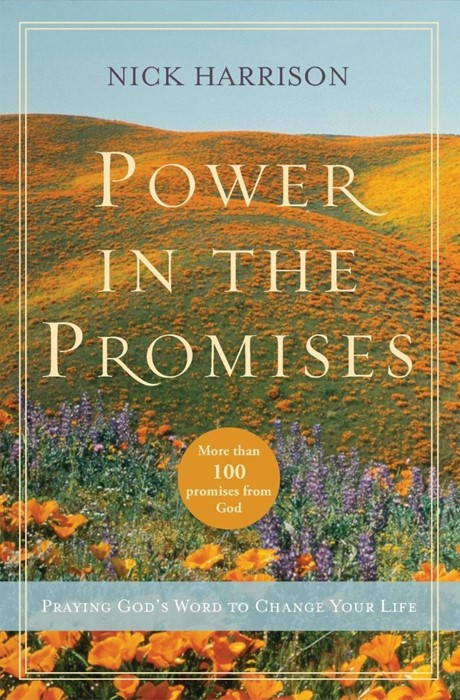 Power In The Promises (Paperback)