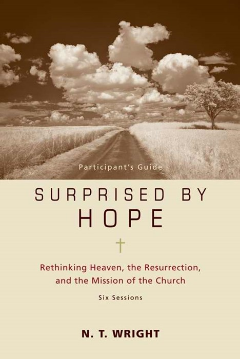 Surprised By Hope Participant's Guide (Paperback)