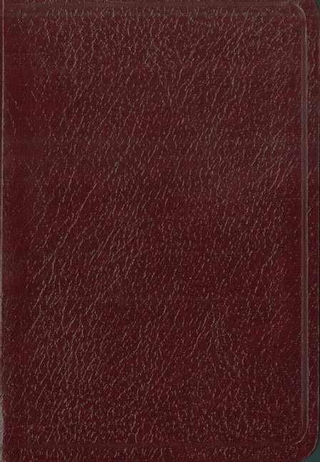 Santa Biblia De Bolsillo Nvi (Leather Binding)