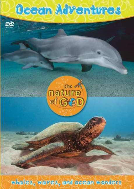 Ocean Adventures, Volume 1 (DVD)