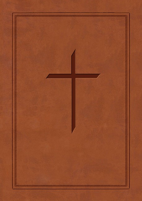 NAS Ryrie Study Bible Soft-Touch Brown Red Letter Indexe, Th (Leather Binding)
