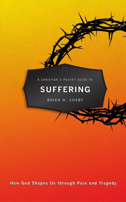 Christian's Pocket Guide to Suffering, A (Paperback)