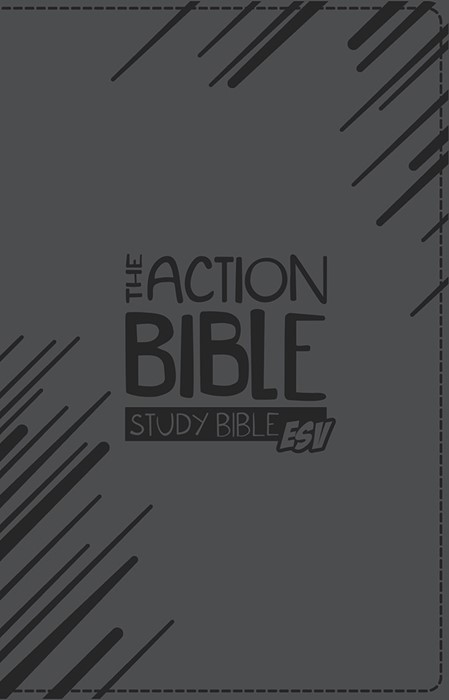 ESV Action Bible Study Bible, Grey (Imitation Leather)