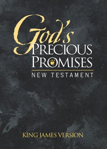 KJV God's Precious Promises New Testament (Paperback)
