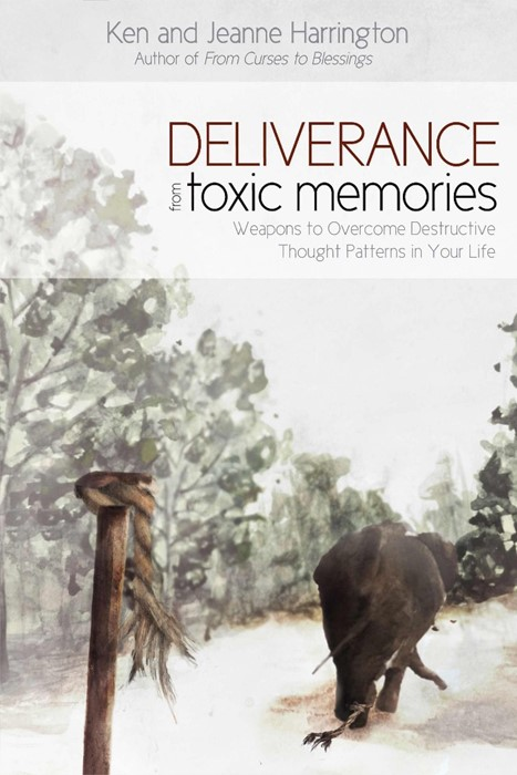 Deliverance From Toxic Memories (Paperback)
