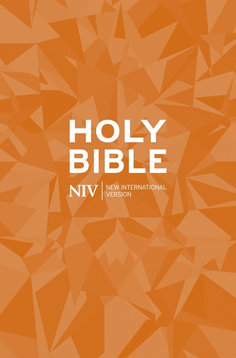 NIV Popular Paperback Bible (Paper Back)