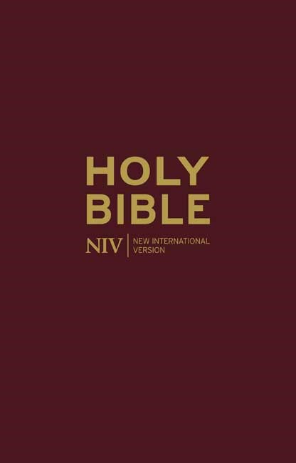 NIV Deluxe Burgundy Leather Bible (Hard Cover)