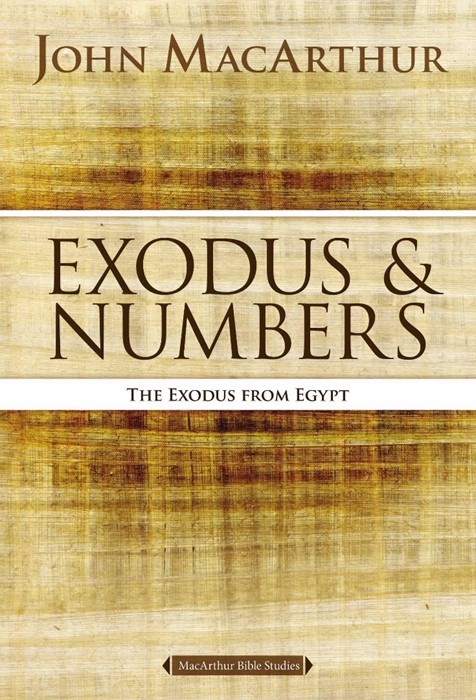 Exodus And Numbers (Paperback)